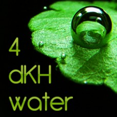 4dKH Water 100ml